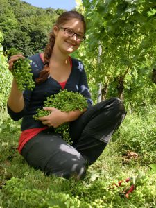 Grüne Ernte 2012