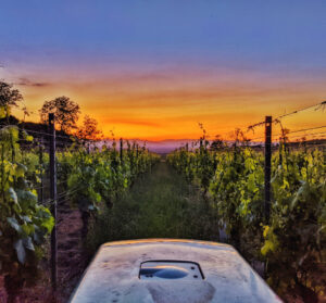 traktor_sunset_kl